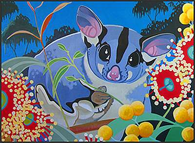 Sugar Glider Fine Art Prints